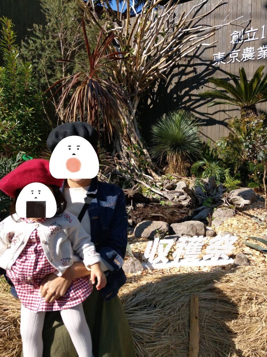 今年の収穫祭