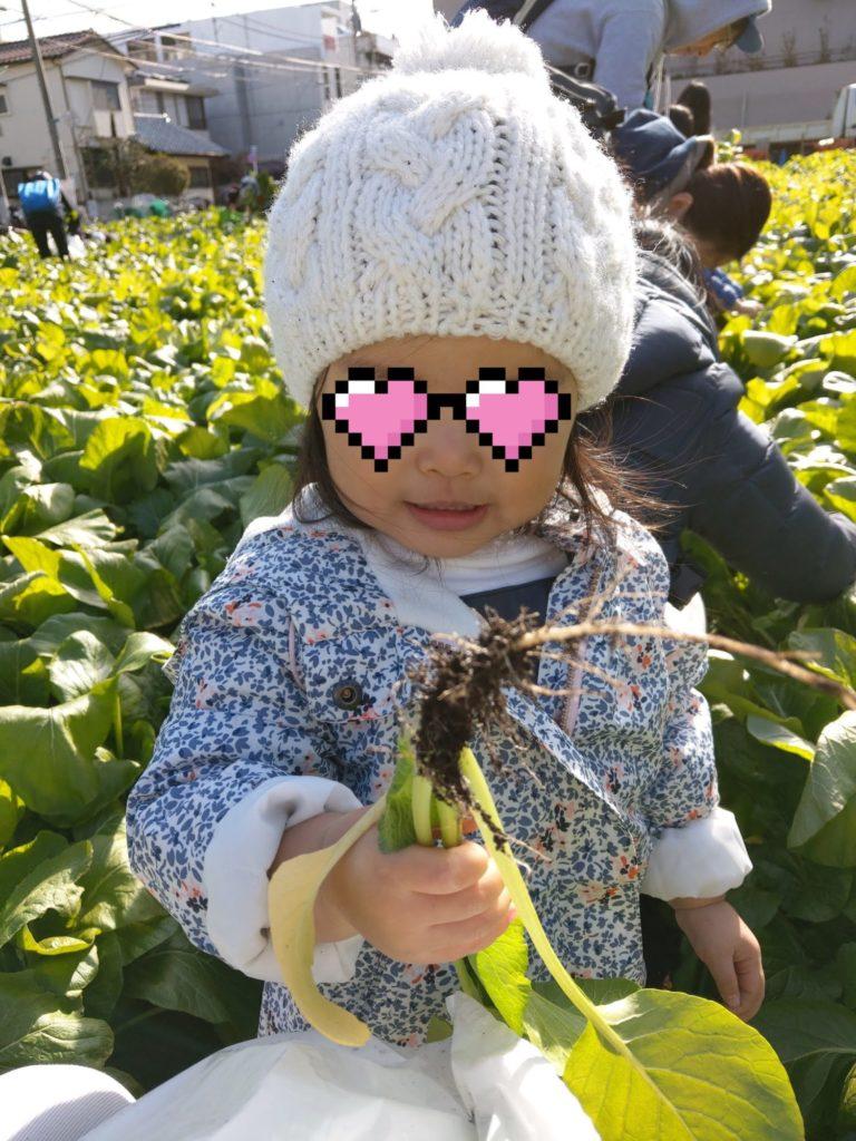 小松菜と娘