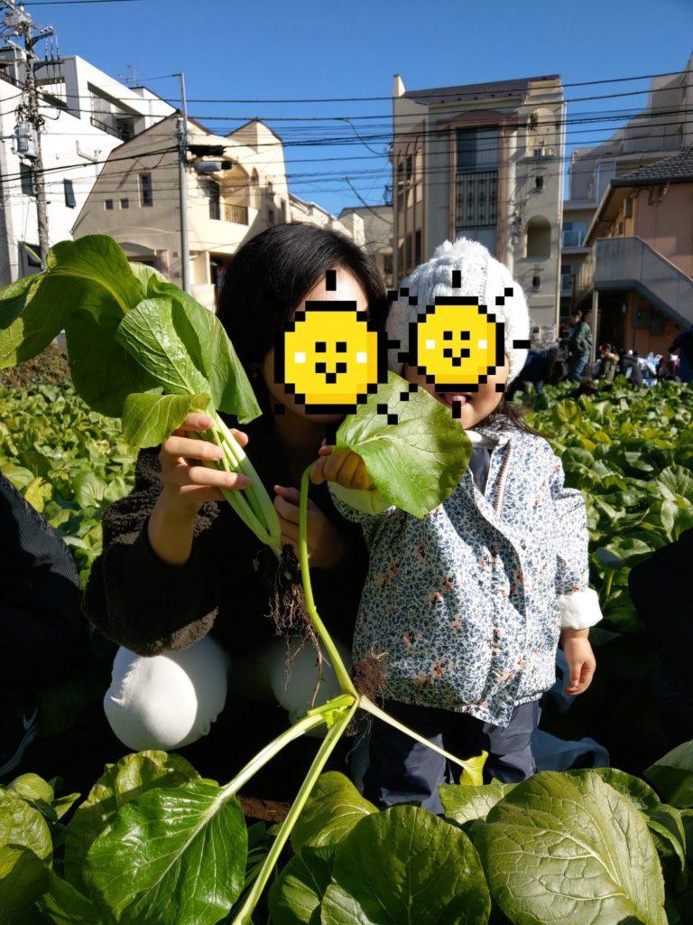小松菜とママと娘