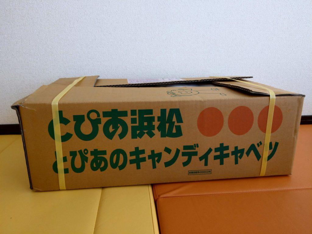 キャンディキャベツ箱